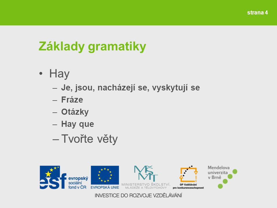 strana 4 Základy gramatiky Hay –Je, jsou, nacházejí se, vyskytují se –Fráze –Otázky –Hay que –Tvořte věty