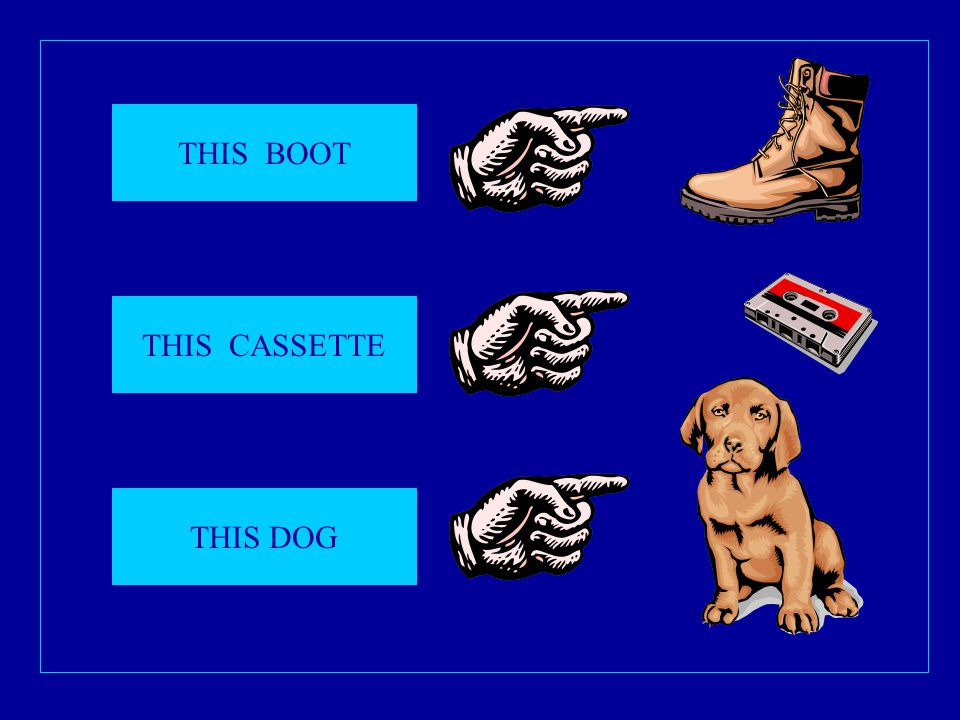 THIS BOOT THIS CASSETTE THIS DOG
