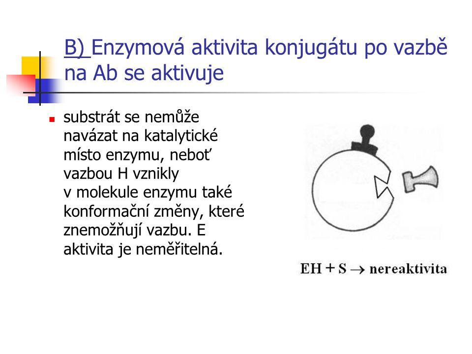 B) Enzymová aktivita konjugátu po vazbě na Ab se aktivuje substrát se nemůže navázat na katalytické místo enzymu, neboť vazbou H vznikly v molekule en