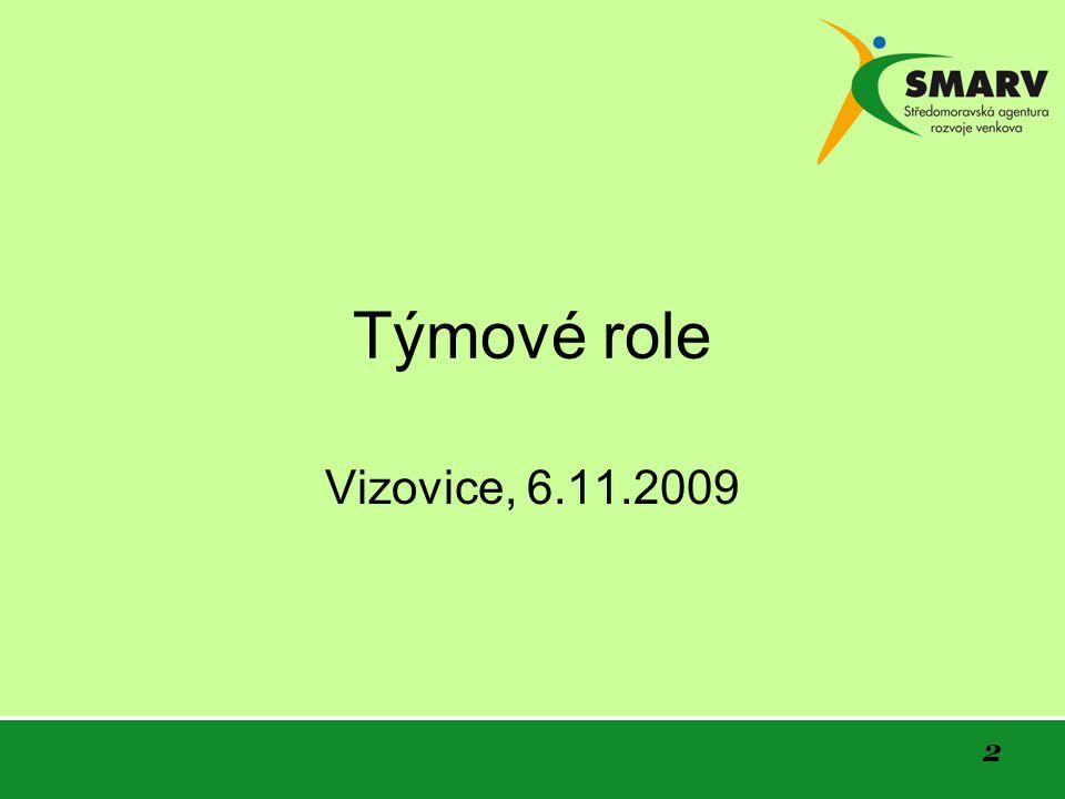 2 Týmové role Vizovice, 6.11.2009