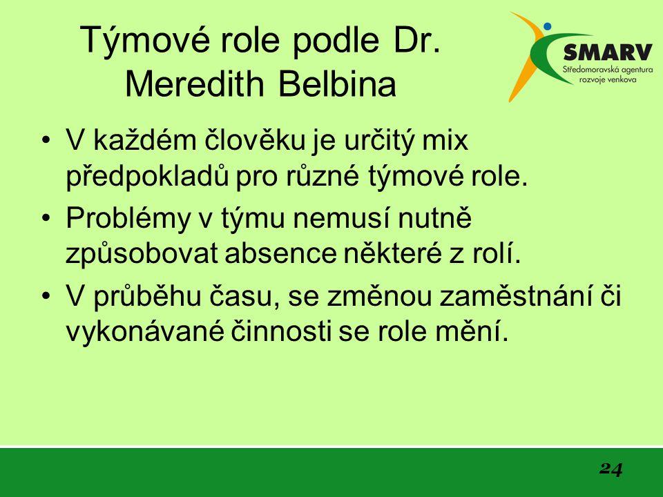 24 Týmové role podle Dr.