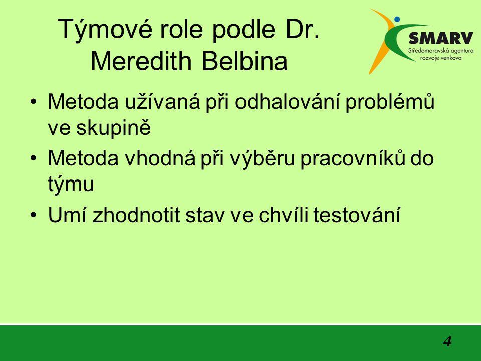 4 Týmové role podle Dr.
