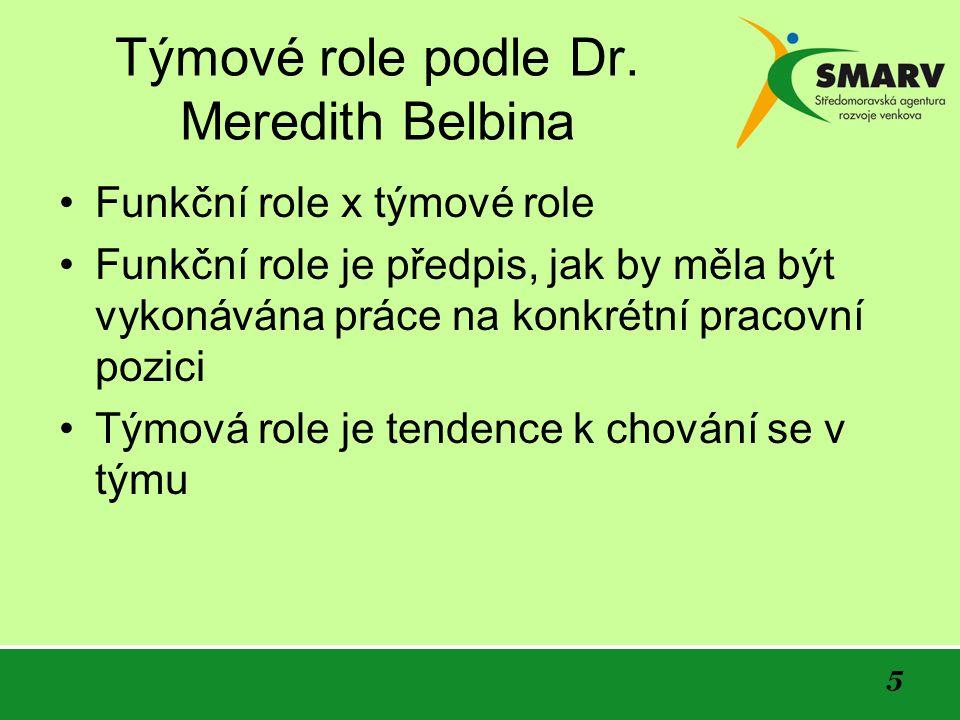 5 Týmové role podle Dr.