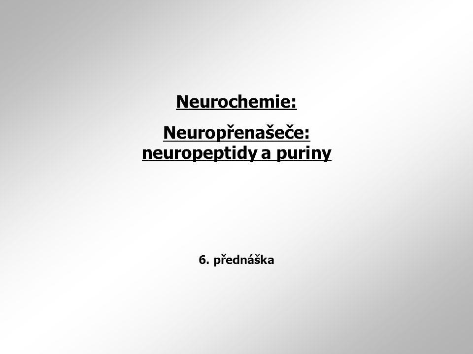 Neurochemie: Neuropřenašeče: neuropeptidy a puriny 6. přednáška