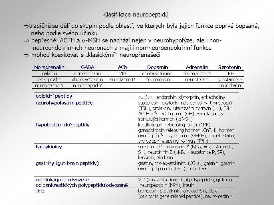 """Klasifikace neuropeptidů  tradičně se dělí do skupin podle oblastí, ve kterých byla jejich funkce poprvé popsaná, nebo podle svého účinku  nepřesné: ACTH a  -MSH se nachází nejen v neurohypofýze, ale i non- neuroendokrinních neuronech a mají i non-neuroendokrinní funkce  mohou koexitovat s """"klasickými neuropřenašeči"""