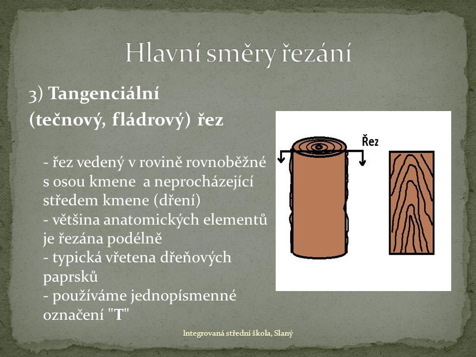 3) Tangenciální (tečnový, fládrový) řez - řez vedený v rovině rovnoběžné s osou kmene a neprocházející středem kmene (dření) - většina anatomických el