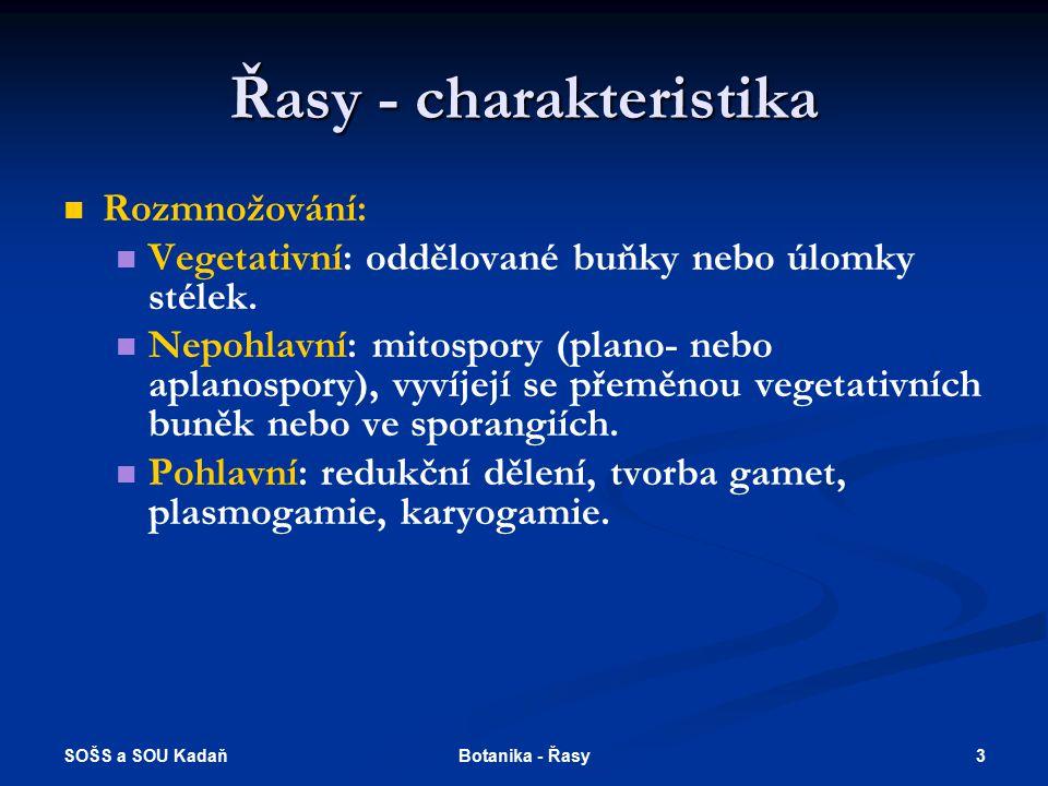 SOŠS a SOU Kadaň 2Botanika - Řasy Řasy - charakteristika Eukaryotické organismy Jádro eukaryotického typu: jaderná membrána, jadérko, lineární molekul