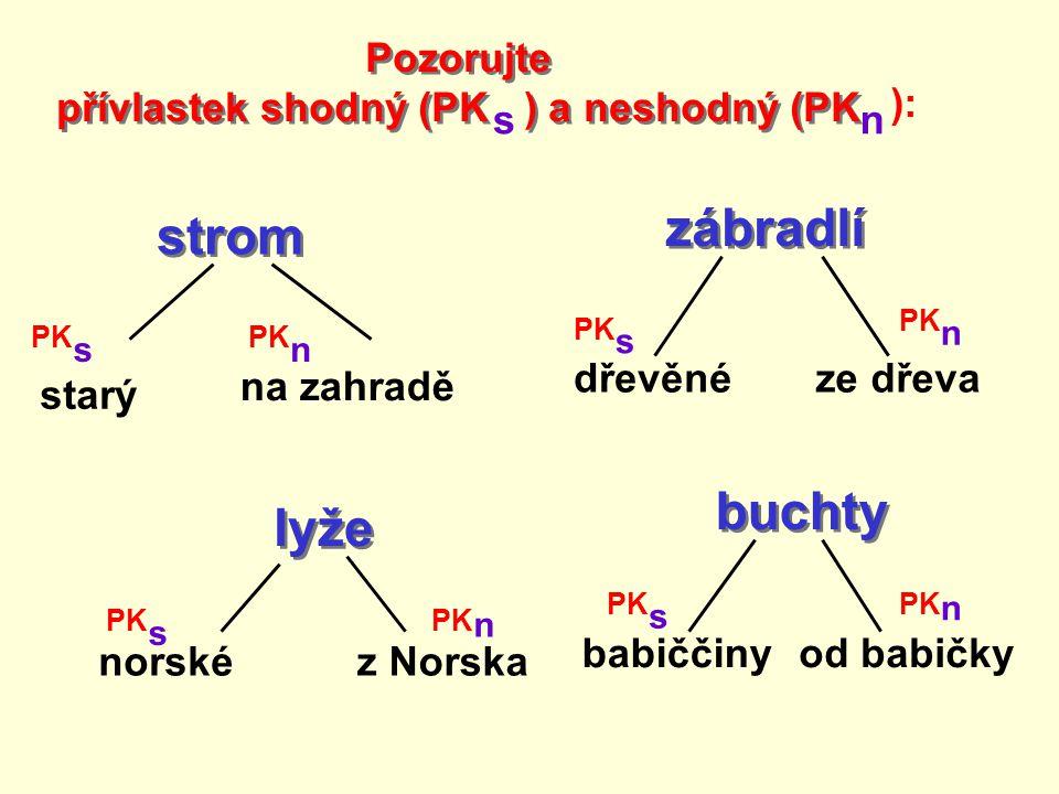 strom starý na zahradě PK s n zábradlí dřevěnéze dřeva PK s n lyže norskéz Norska PK s n buchty babiččinyod babičky PK s n Pozorujte přívlastek shodný (PK ) a neshodný (PK Pozorujte přívlastek shodný (PK ) a neshodný (PK s n ):