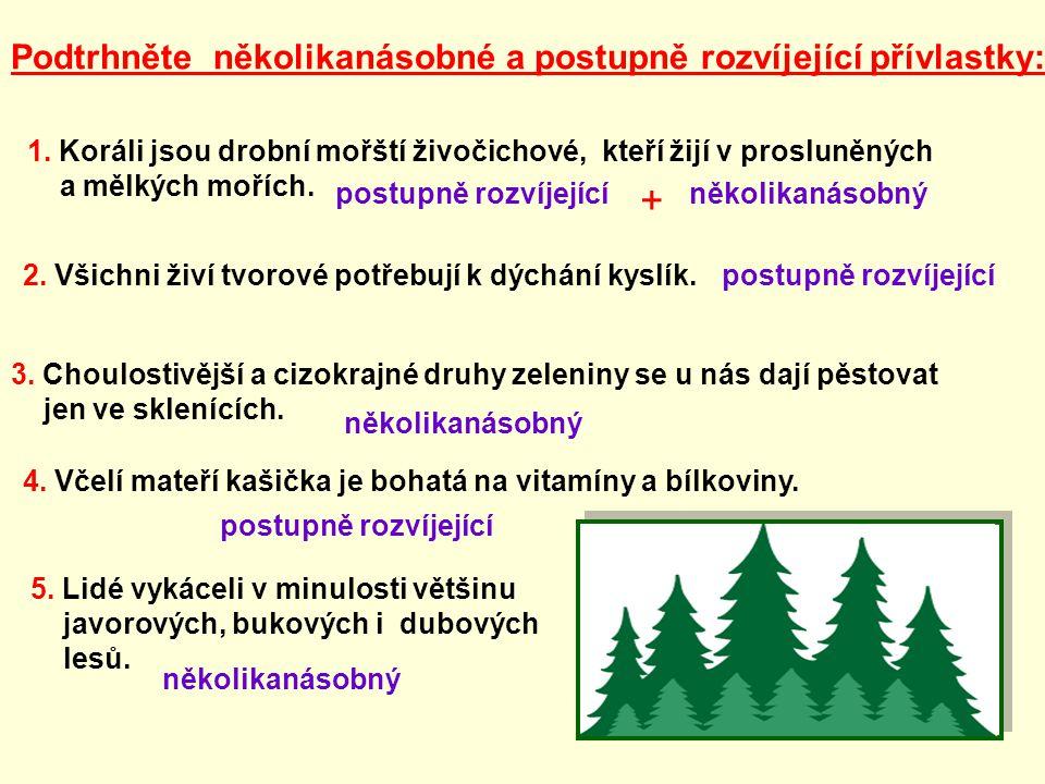 Použité zdroje: http://naturasiprieteniisai.sapte.ro/forest02OL.gif [cit.
