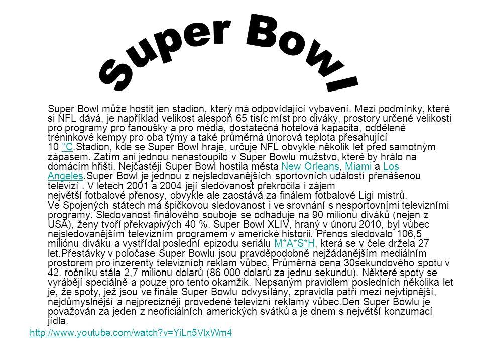 Super Bowl může hostit jen stadion, který má odpovídající vybavení. Mezi podmínky, které si NFL dává, je například velikost alespoň 65 tisíc míst pro