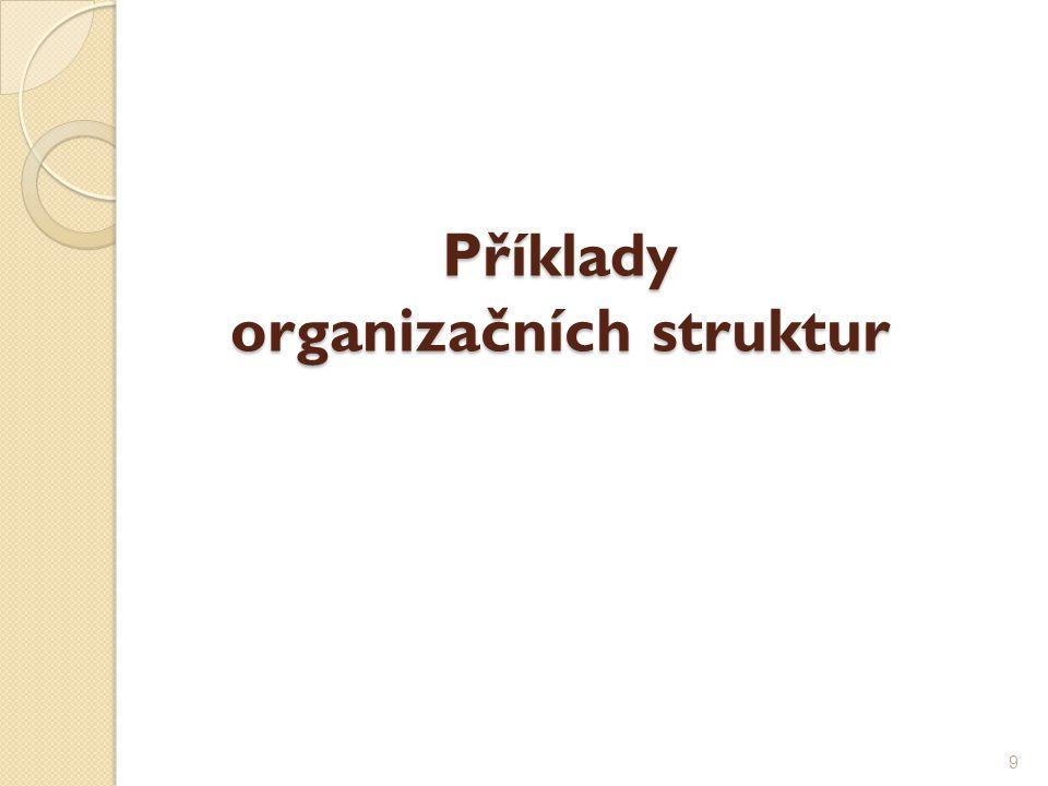 Příklady organizačních struktur 9