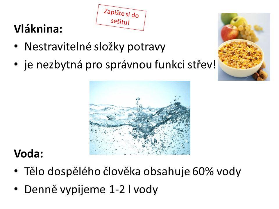 Vláknina: Nestravitelné složky potravy je nezbytná pro správnou funkci střev! Voda: Tělo dospělého člověka obsahuje 60% vody Denně vypijeme 1-2 l vody