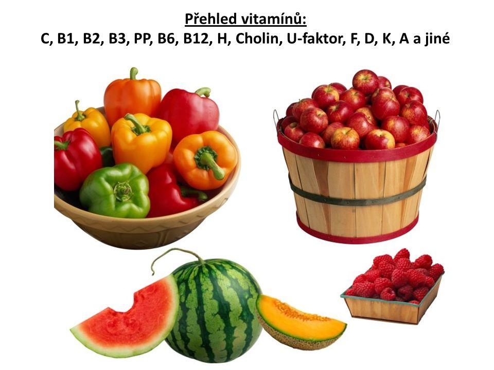 Přehled vitamínů: C, B1, B2, B3, PP, B6, B12, H, Cholin, U-faktor, F, D, K, A a jiné