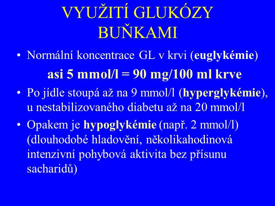 VYUŽITÍ GLUKÓZY BUŇKAMI Normální koncentrace GL v krvi (euglykémie) asi 5 mmol/l = 90 mg/100 ml krve Po jídle stoupá až na 9 mmol/l (hyperglykémie), u nestabilizovaného diabetu až na 20 mmol/l Opakem je hypoglykémie (např.
