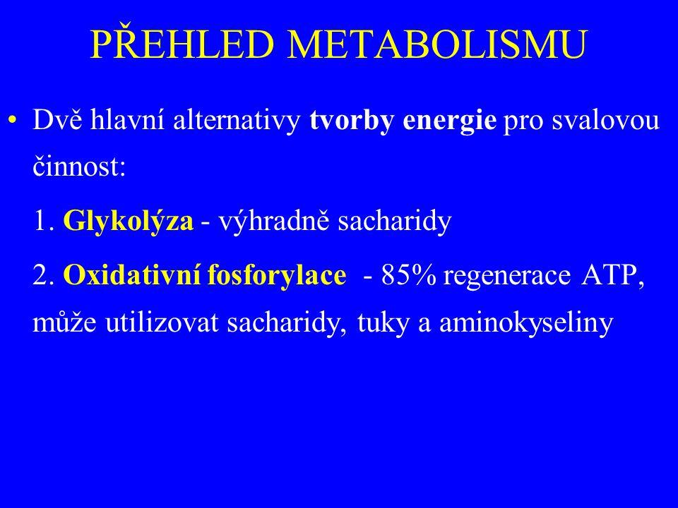 PŘEHLED METABOLISMU Dvě hlavní alternativy tvorby energie pro svalovou činnost: 1. Glykolýza - výhradně sacharidy 2. Oxidativní fosforylace - 85% rege