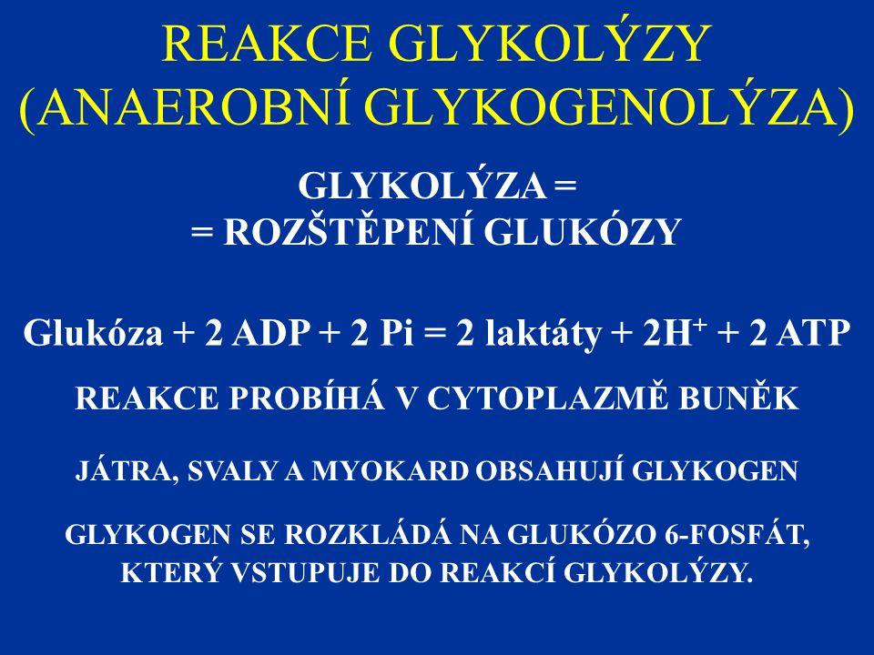 REAKCE GLYKOLÝZY (ANAEROBNÍ GLYKOGENOLÝZA) GLYKOLÝZA = = ROZŠTĚPENÍ GLUKÓZY Glukóza + 2 ADP + 2 Pi = 2 laktáty + 2H + + 2 ATP REAKCE PROBÍHÁ V CYTOPLAZMĚ BUNĚK JÁTRA, SVALY A MYOKARD OBSAHUJÍ GLYKOGEN GLYKOGEN SE ROZKLÁDÁ NA GLUKÓZO 6-FOSFÁT, KTERÝ VSTUPUJE DO REAKCÍ GLYKOLÝZY.