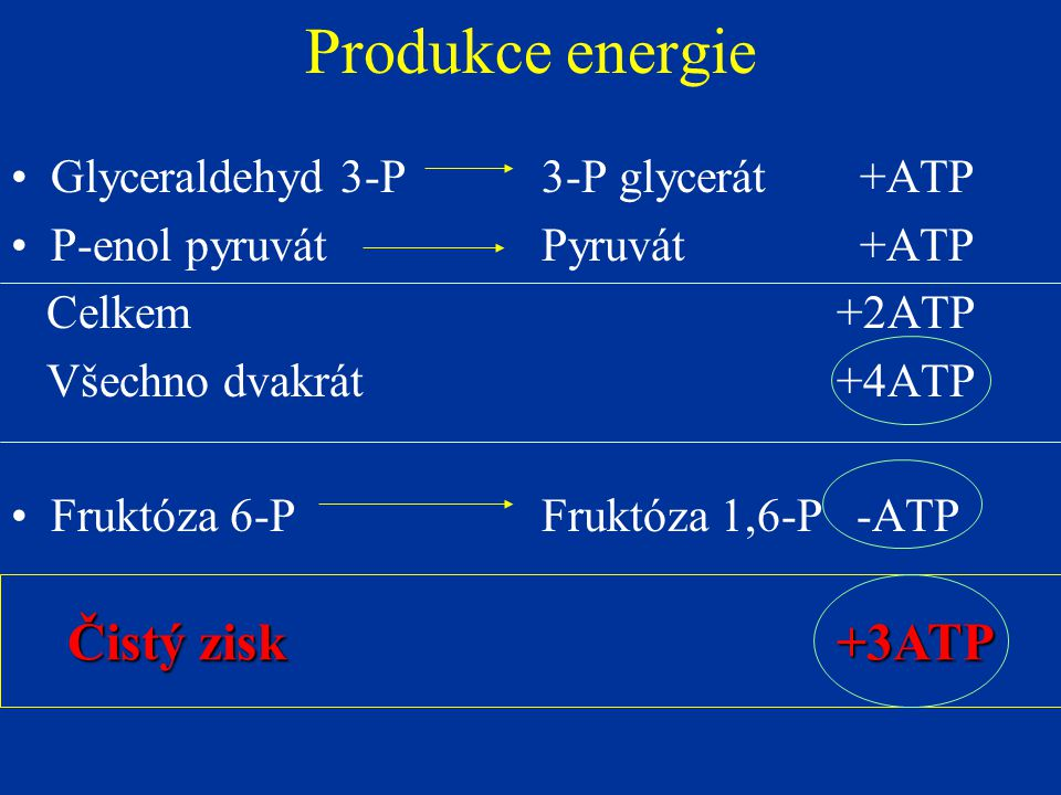 Produkce energie Glyceraldehyd 3-P3-P glycerát+ATP P-enol pyruvátPyruvát+ATP Celkem +2ATP Všechno dvakrát +4ATP Fruktóza 6-PFruktóza 1,6-P -ATP Čistý zisk +3ATP