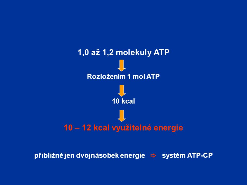 1,0 až 1,2 molekuly ATP Rozložením 1 mol ATP 10 kcal 10 – 12 kcal využitelné energie přibližně jen dvojnásobek energie  systém ATP-CP