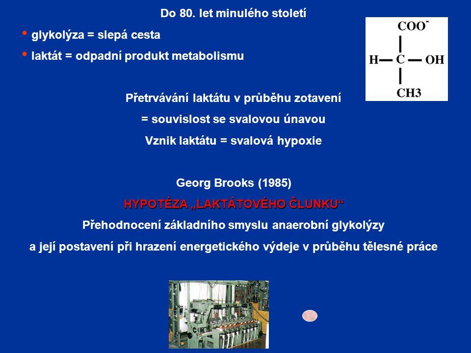 Do 80. let minulého století glykolýza = slepá cesta laktát = odpadní produkt metabolismu Přetrvávání laktátu v průběhu zotavení = souvislost se svalov
