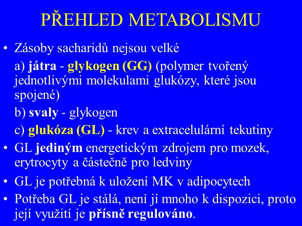 Zásoby sacharidů nejsou velké a) játra - glykogen (GG) (polymer tvořený jednotlivými molekulami glukózy, které jsou spojené) b) svaly - glykogen c) glukóza (GL) - krev a extracelulární tekutiny GL jediným energetickým zdrojem pro mozek, erytrocyty a částečně pro ledviny GL je potřebná k uložení MK v adipocytech Potřeba GL je stálá, není jí mnoho k dispozici, proto její využití je přísně regulováno.