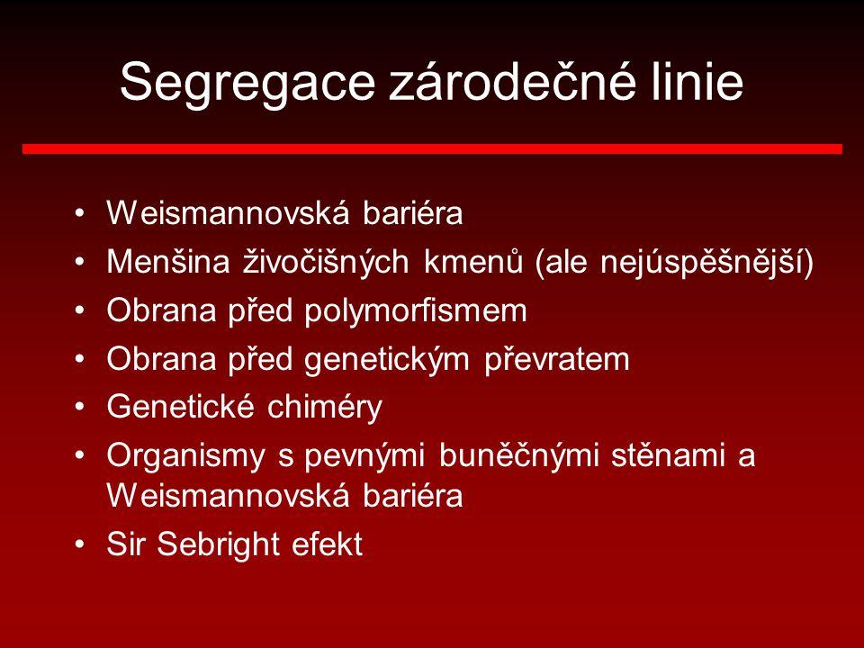 Segregace zárodečné linie Weismannovská bariéra Menšina živočišných kmenů (ale nejúspěšnější) Obrana před polymorfismem Obrana před genetickým převrat