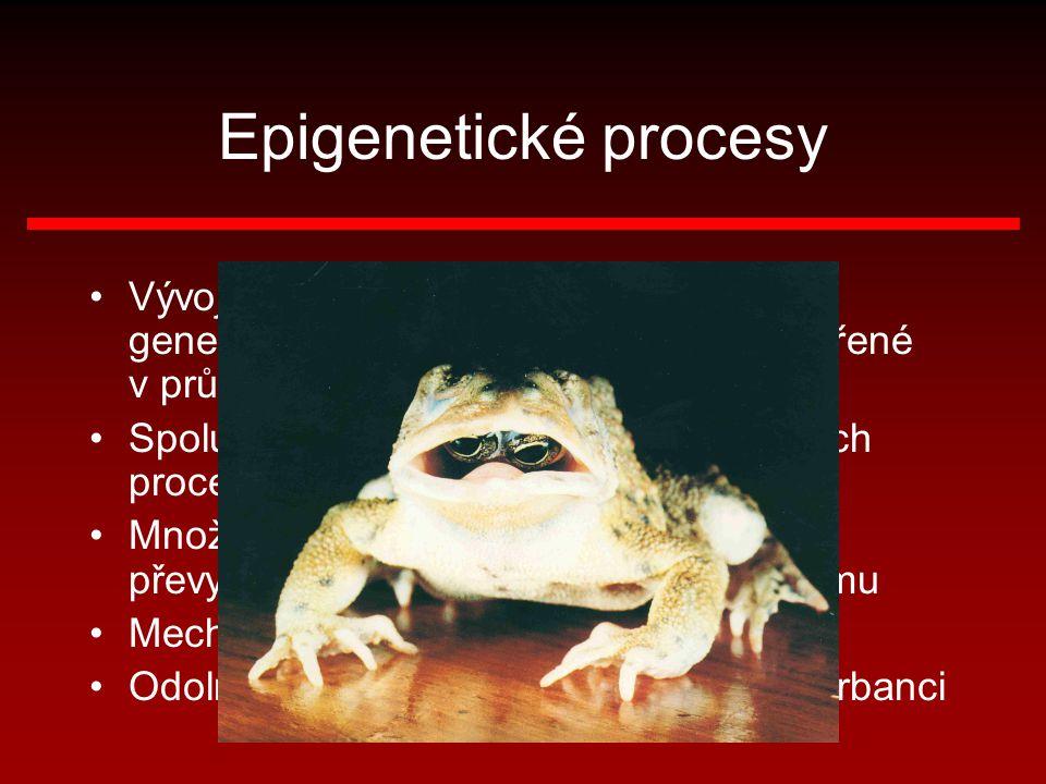 Epigenetické procesy Vývoj (vývin) organismu neřídí přímo genetická informace, ale systémy vytvořené v průběhu tohoto vývoje Spolupráce epigenetických