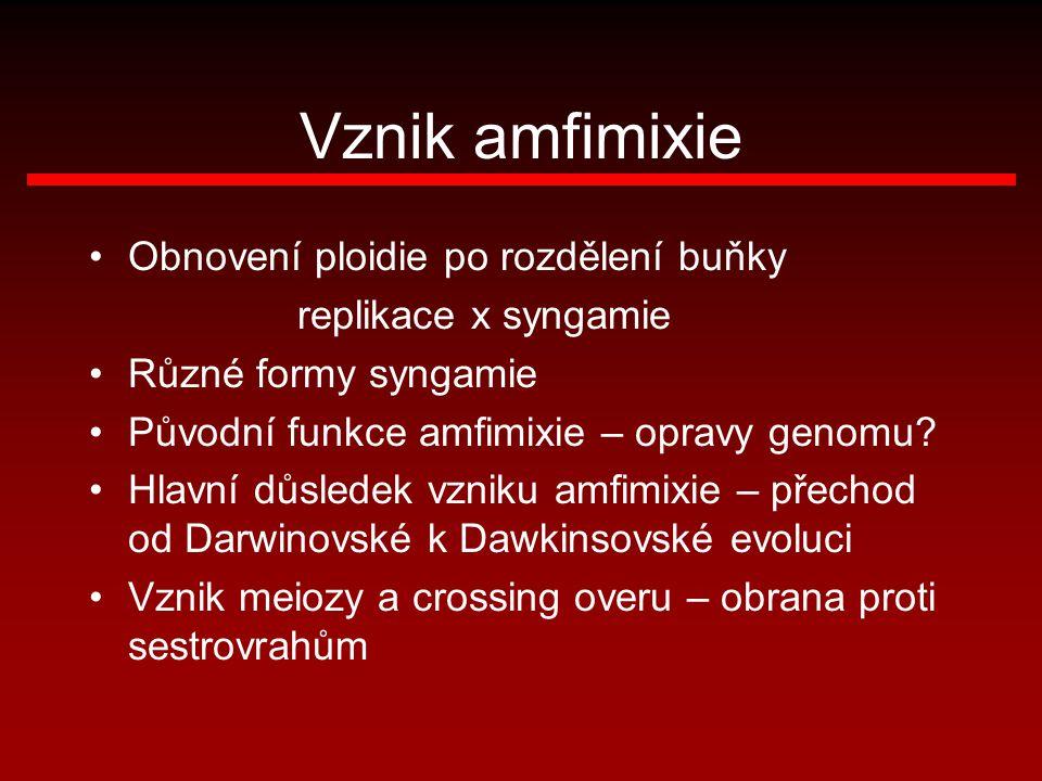 Vznik amfimixie Obnovení ploidie po rozdělení buňky replikace x syngamie Různé formy syngamie Původní funkce amfimixie – opravy genomu? Hlavní důslede