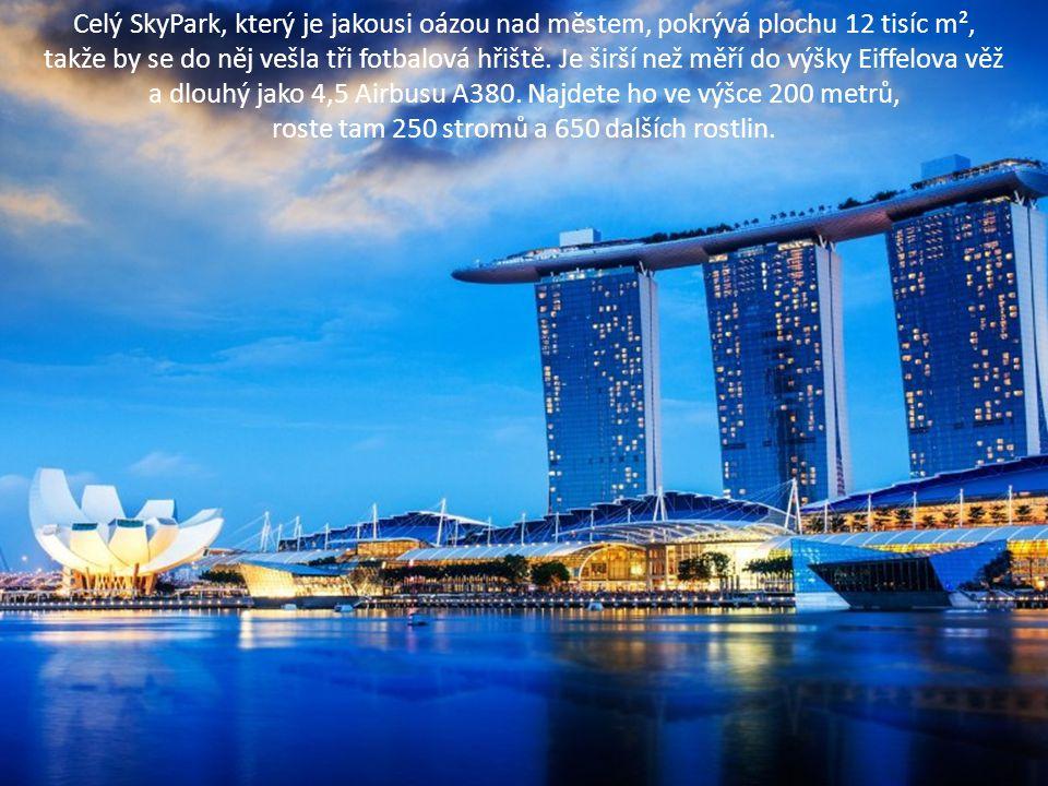 Celý SkyPark, který je jakousi oázou nad městem, pokrývá plochu 12 tisíc m², takže by se do něj vešla tři fotbalová hřiště. Je širší než měří do výšky