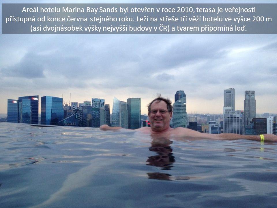Areál hotelu Marina Bay Sands byl otevřen v roce 2010, terasa je veřejnosti přístupná od konce června stejného roku. Leží na střeše tří věží hotelu ve