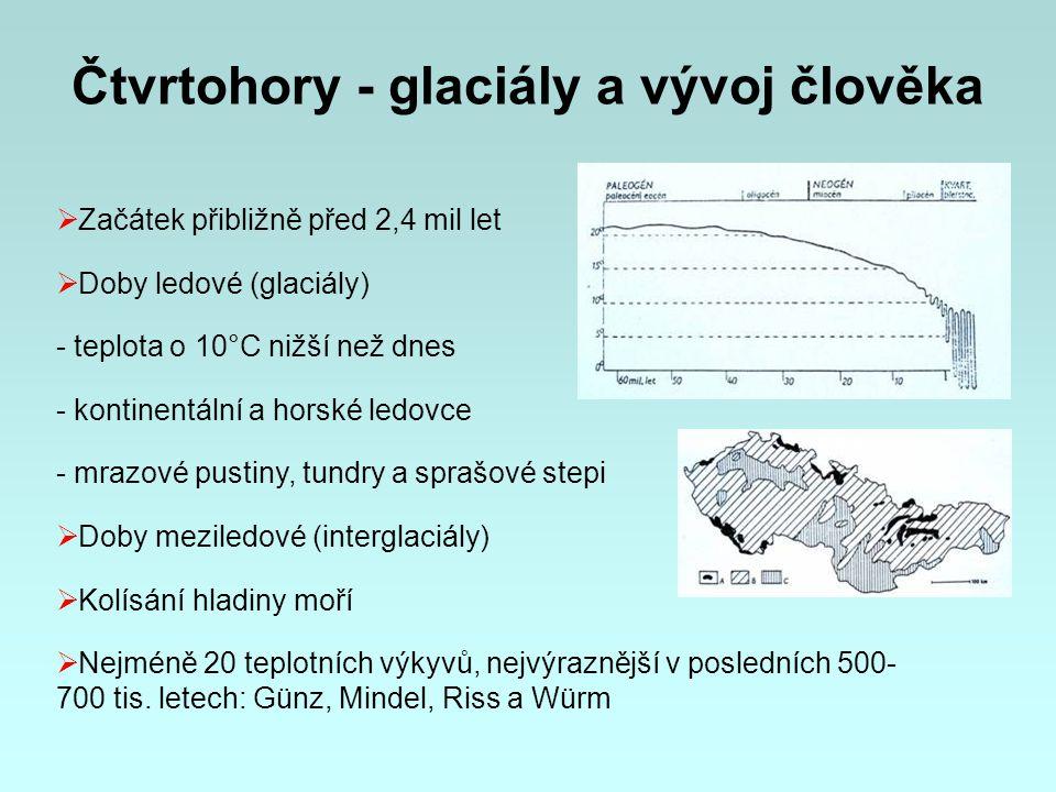 Čtvrtohory - glaciály a vývoj člověka  Začátek přibližně před 2,4 mil let  Doby ledové (glaciály) - teplota o 10°C nižší než dnes - kontinentální a