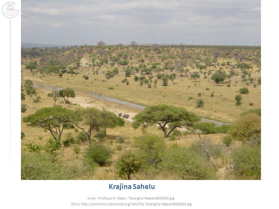 Krajina Sahelu Autor: ProfessorX, Název: Tarangire-Natpark800600.jpg Zdroj: http://commons.wikimedia.org/wiki/File:Tarangire-Natpark800600.jpg