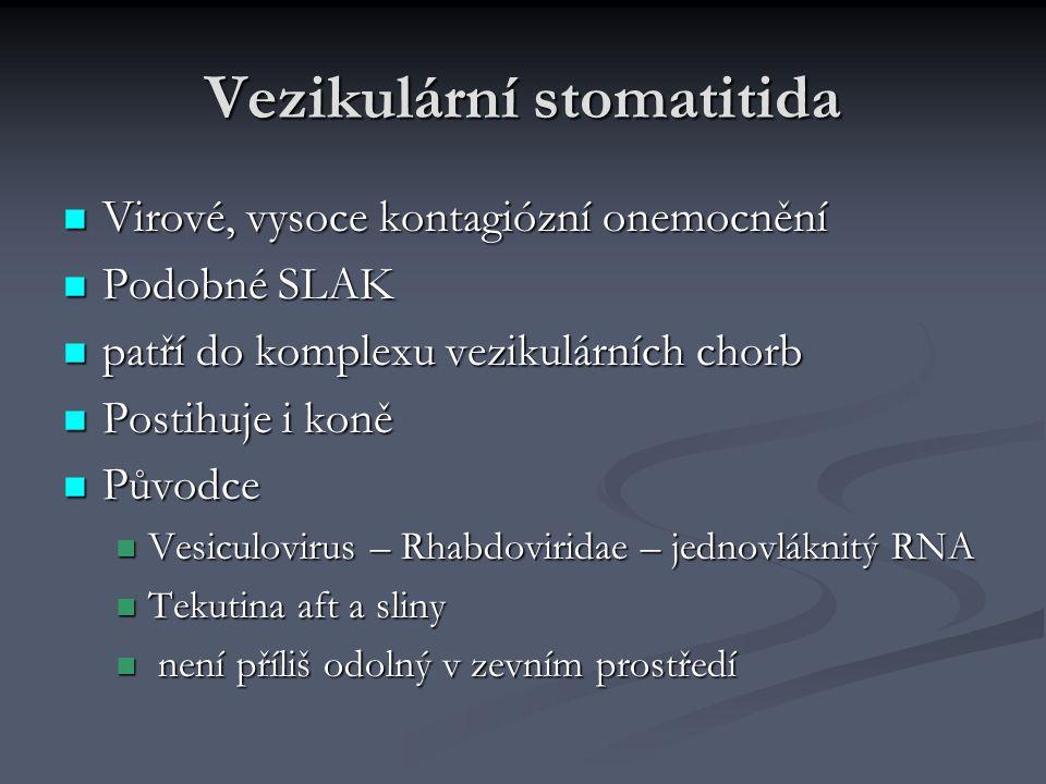 Vezikulární stomatitida Virové, vysoce kontagiózní onemocnění Virové, vysoce kontagiózní onemocnění Podobné SLAK Podobné SLAK patří do komplexu veziku