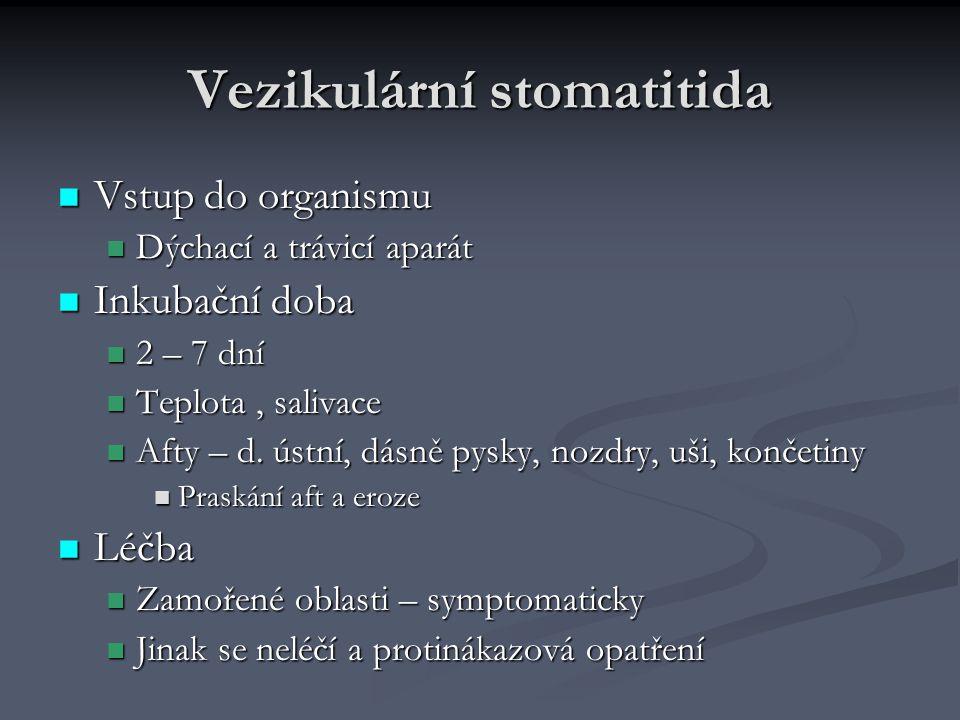 Vezikulární stomatitida Vstup do organismu Vstup do organismu Dýchací a trávicí aparát Dýchací a trávicí aparát Inkubační doba Inkubační doba 2 – 7 dn
