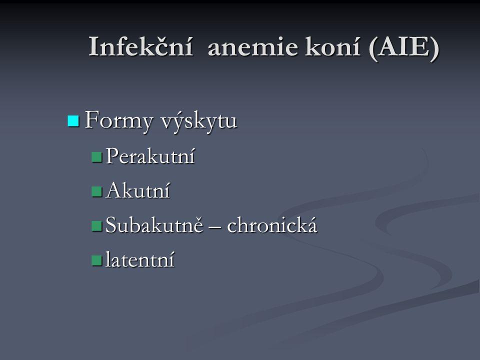 Infekční anemie koní (AIE) Formy výskytu Formy výskytu Perakutní Perakutní Akutní Akutní Subakutně – chronická Subakutně – chronická latentní latentní