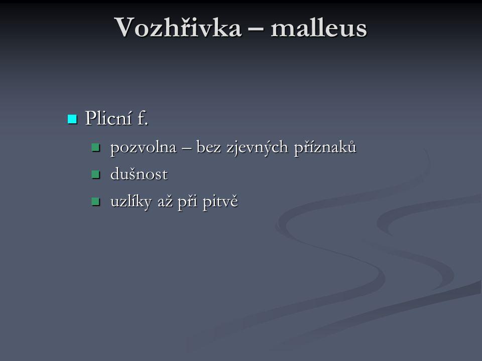 Vozhřivka – malleus Plicní f. Plicní f. pozvolna – bez zjevných příznaků pozvolna – bez zjevných příznaků dušnost dušnost uzlíky až při pitvě uzlíky a