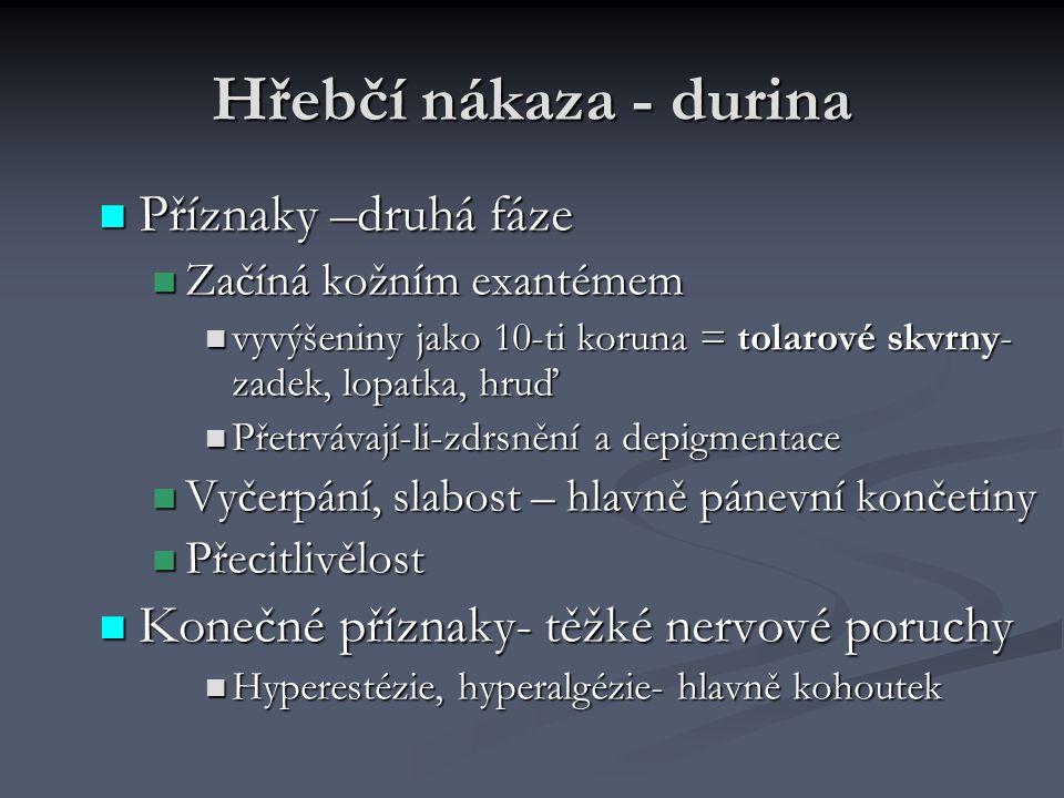 Hřebčí nákaza - durina Příznaky –druhá fáze Příznaky –druhá fáze Začíná kožním exantémem Začíná kožním exantémem vyvýšeniny jako 10-ti koruna = tolaro
