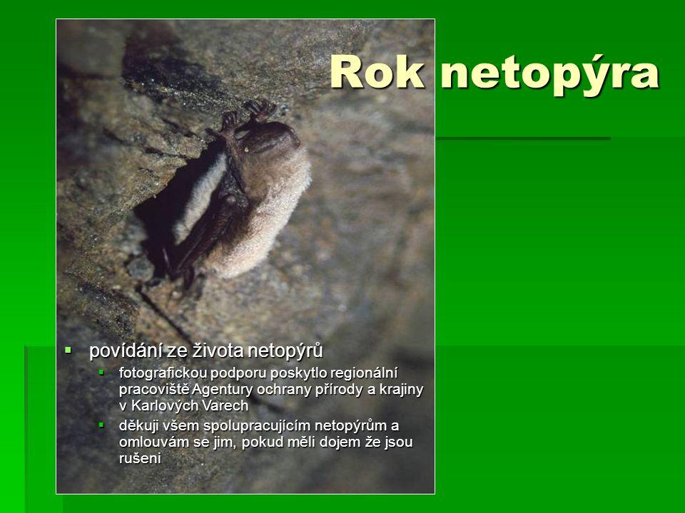  povídání ze života netopýrů  fotografickou podporu poskytlo regionální pracoviště Agentury ochrany přírody a krajiny v Karlových Varech  děkuji všem spolupracujícím netopýrům a omlouvám se jim, pokud měli dojem že jsou rušeni Rok netopýra