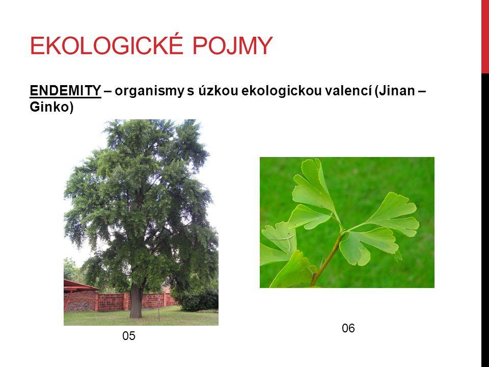 EKOLOGICKÉ POJMY ENDEMITY – organismy s úzkou ekologickou valencí (Jinan – Ginko) 05 06