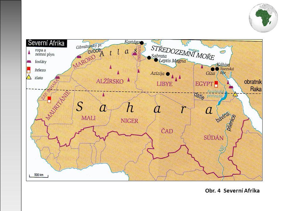 největší poušť naší planety (9 milionů km²) rozkládá se v severní Africe podél obratníku Raka obrovská tabule o nadmořské výšce 200 - 500 m vlivem hercynského vrásnění byla vyzdvižena pohoří Hoggar, Tassili a Tibesti typy pouští: písečná (erg) - tvoří 20% rozlohy Sahary skalnatá (hamada) štěrková (serír) suchá krajina se srážkami nižšími než 250 mm/rok v létě teploty vzduchu až nad 50°C, teplotní výkyvy mezi dnem a nocí vanou zde suché severovýchodní pasáty, písečné bouře, vznikají písečné přesypy s výjimkou Nilu pouze periodická vádí bohaté podzemní vody (vznik oáz) velmi řídký rostlinný pokryv - palmy v oázách chudá fauna - hadi, ještěrky, škorpioni, hmyz, velbloudi oblast je liduprázdná nebo jen v krátkém období roku osídlena kočovnými kmeny pastevců Sahara skrývá značné zásoby nerostných surovin (zejména ropy a zemního plynu), jejich využívání však brání horké a suché podnebí, chybí dopravní síť