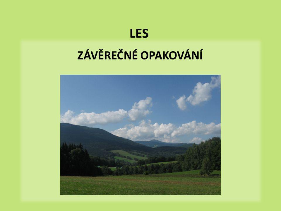 Význam lesa  Doplňte pojmy do textu: Les má v přírodě velký.