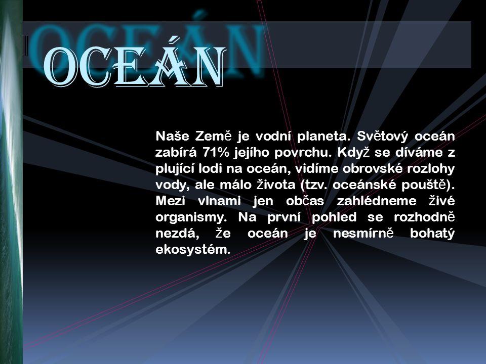 Naše Zem ě je vodní planeta. Sv ě tový oceán zabírá 71% jejího povrchu.