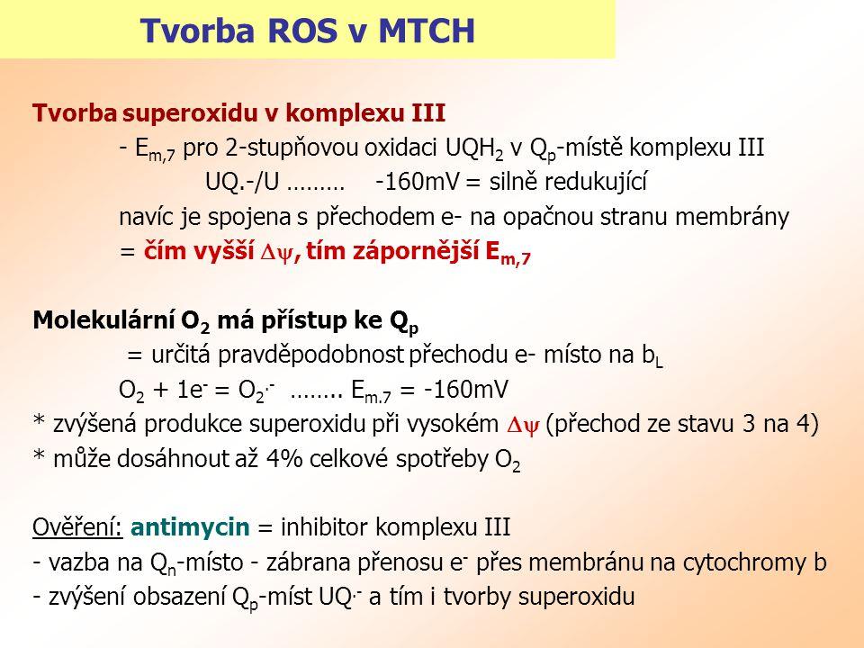Tvorba ROS v MTCH Tvorba superoxidu v komplexu III - E m,7 pro 2-stupňovou oxidaci UQH 2 v Q p -místě komplexu III UQ.-/U ……… -160mV = silně redukujíc