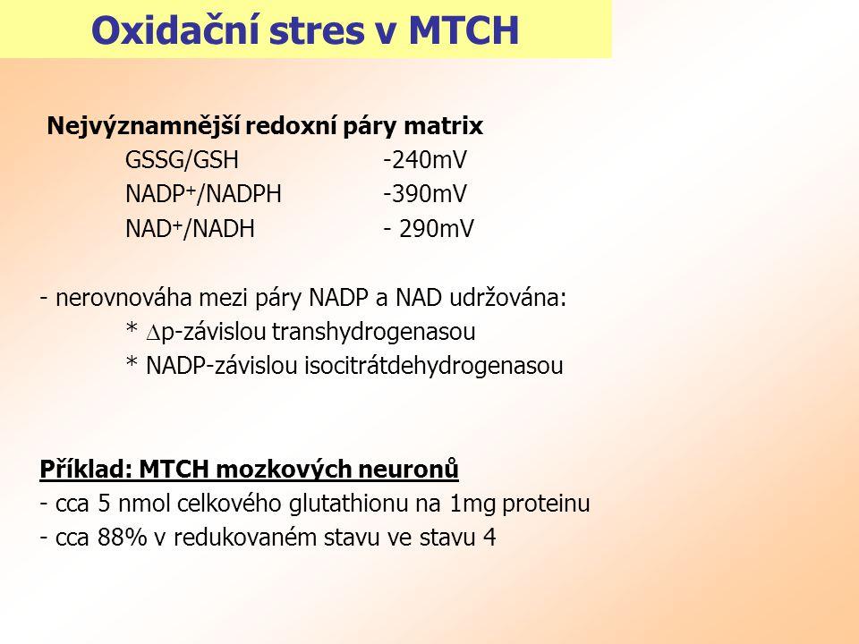 Oxidační stres v MTCH Nejvýznamnější redoxní páry matrix GSSG/GSH -240mV NADP + /NADPH -390mV NAD + /NADH - 290mV - nerovnováha mezi páry NADP a NAD u
