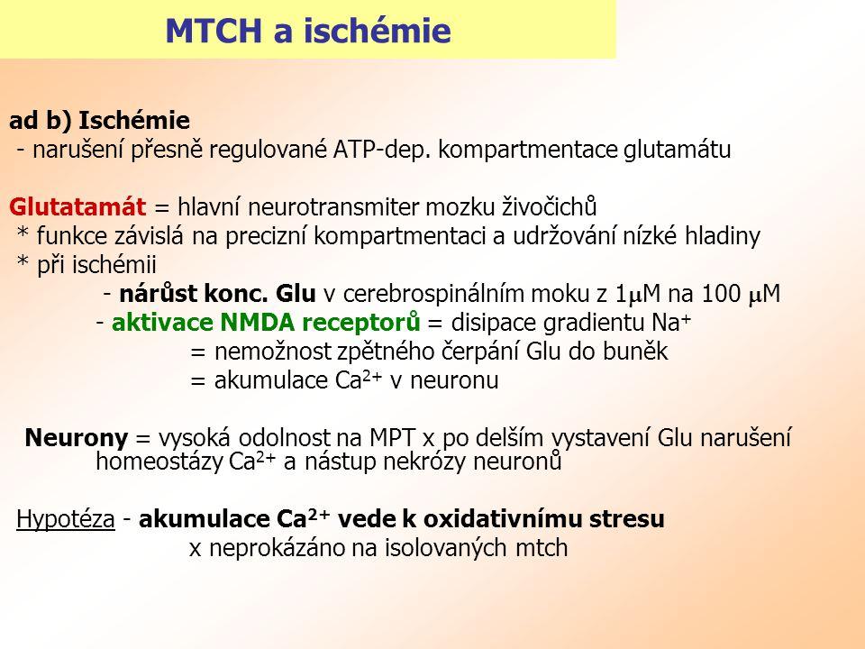 MTCH a ischémie ad b) Ischémie - narušení přesně regulované ATP-dep. kompartmentace glutamátu Glutatamát = hlavní neurotransmiter mozku živočichů * fu