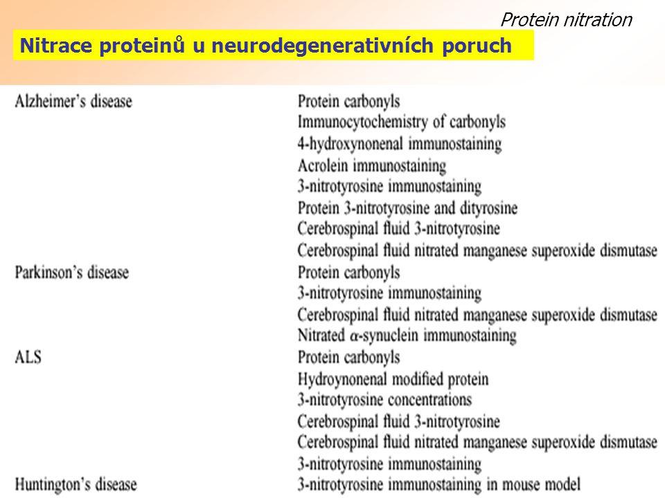 Protein nitration Nitrace proteinů u neurodegenerativních poruch amyotrophic lateral sclerosis