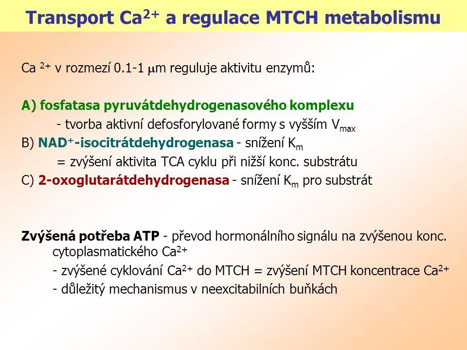 """Přechod mitochondriální propustnosti MPT, """"mtch permeability transition - při překročení určité meze akumulace Ca 2+ - zahrnuje kolaps  p, bobtnání matrix a prasknutí vnější membrány - jeden ze součástí kaskády dějů vedoucích k apoptóze Fyziologický význam MPT: Ca-kanál s nízkou vodivostí ?."""