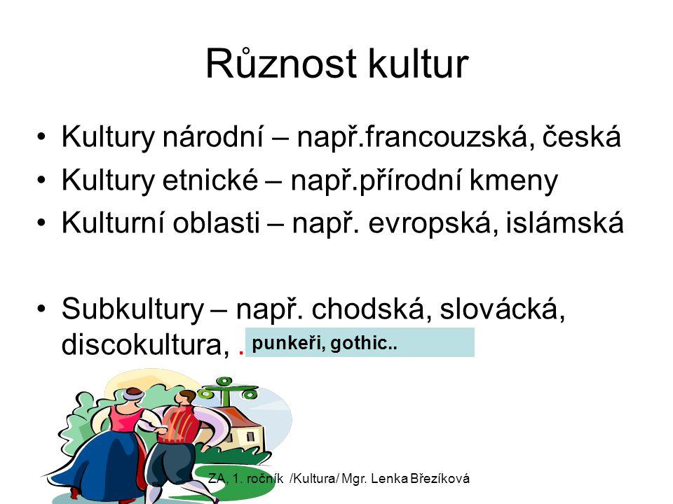 Různost kultur Kultury národní – např.francouzská, česká Kultury etnické – např.přírodní kmeny Kulturní oblasti – např. evropská, islámská Subkultury