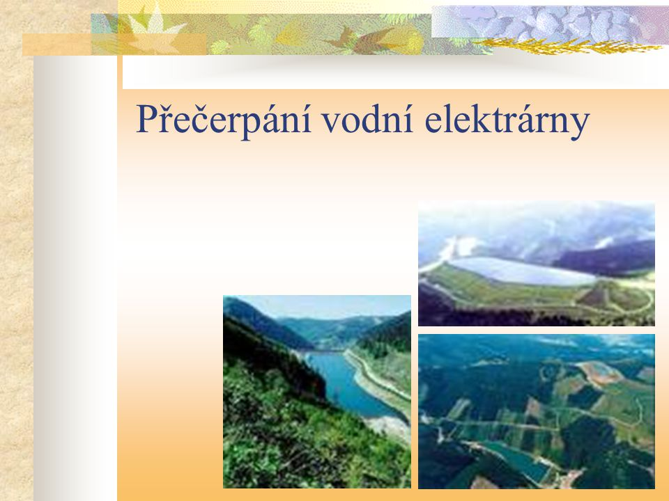 Vodní elektrárny v životním prostředí
