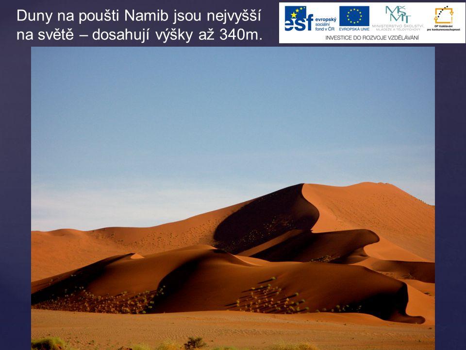 Duny na poušti Namib jsou nejvyšší na světě – dosahují výšky až 340m.