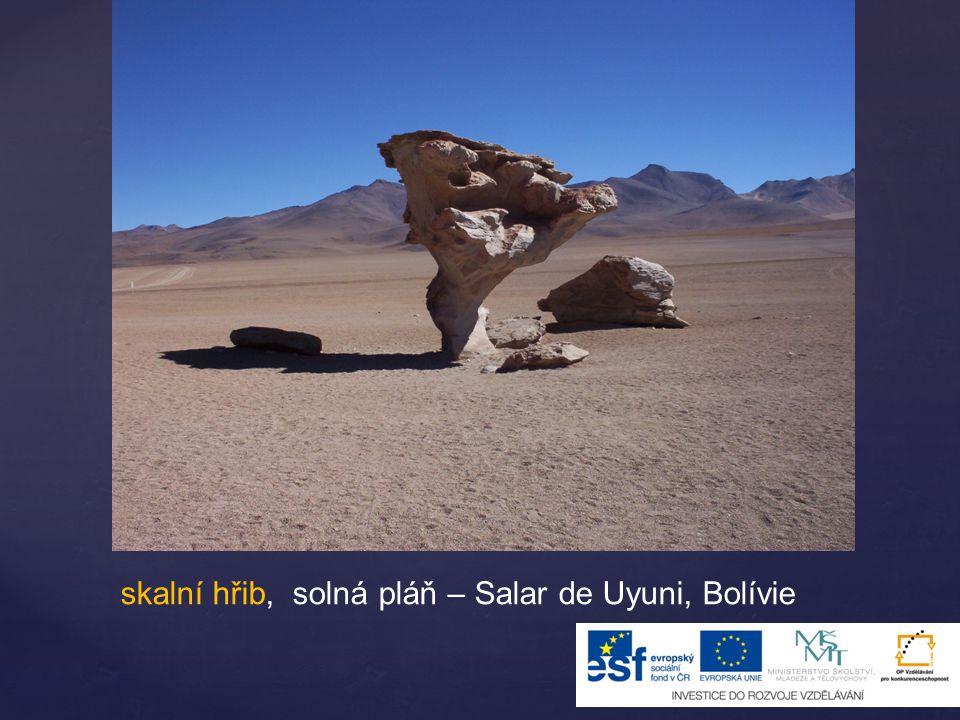 skalní hřib, solná pláň – Salar de Uyuni, Bolívie